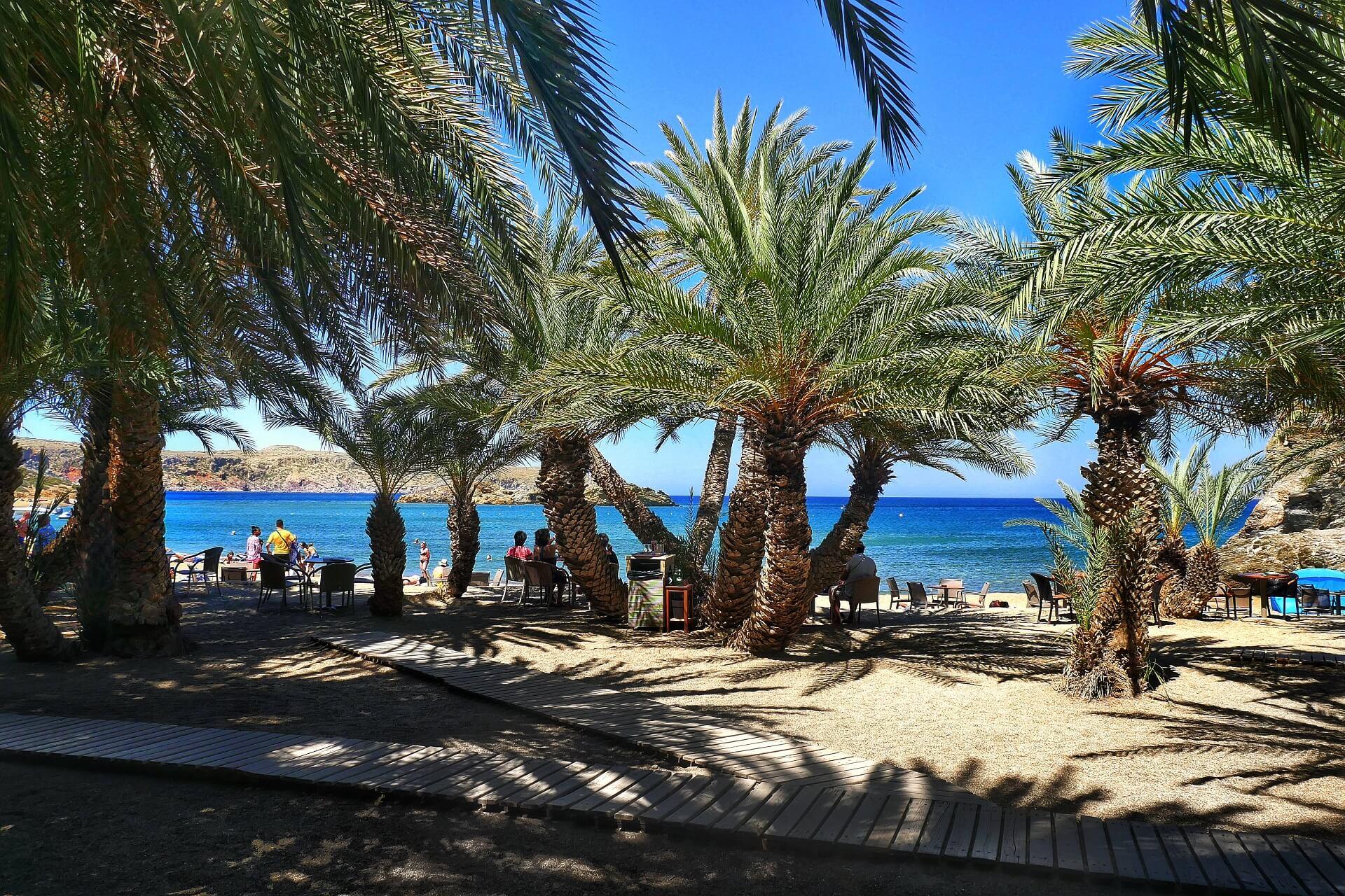 Visit Vai Beach on the Greek Island of Crete