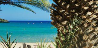 Vai Beach (Finikodasos) beach Sitia Crete - allincrete.com