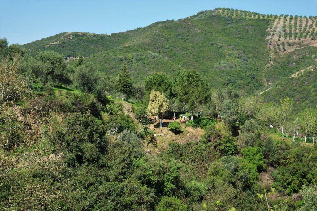 Botanical Park of Crete Chania