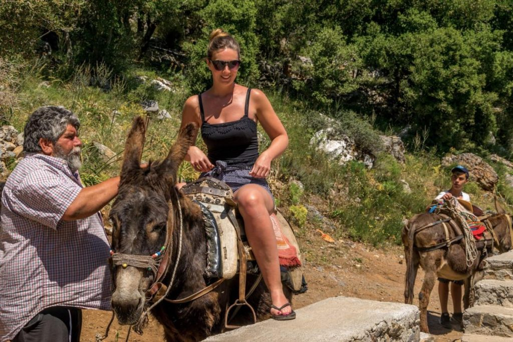 Safari Experts Malia Heraklion Crete